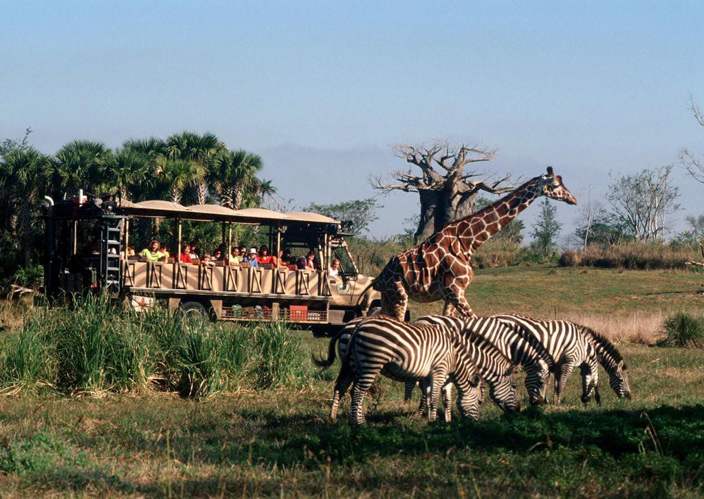 new-attractions-disney-world-animal-kingdom-2016